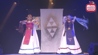 wcs france 2014 zelda japan expo
