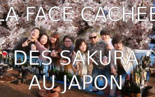 OSSU--sakura-alcool-japon-tokyo
